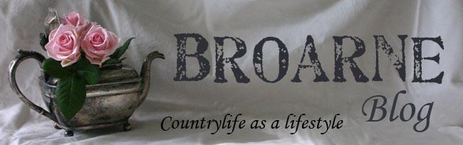 Broarne blog