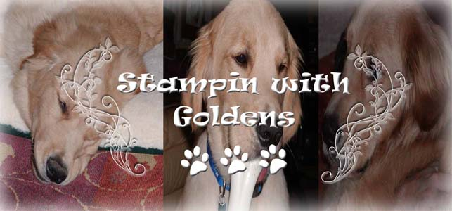 Stampin with Goldens