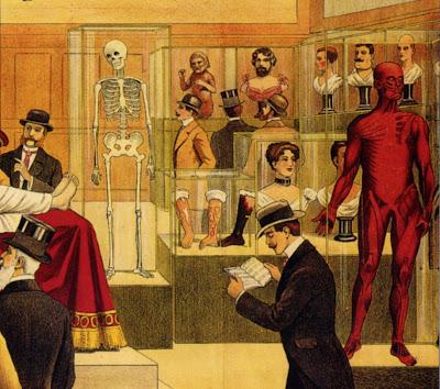 Plakat für ein anatomisches Museum, Hamburg, 1913