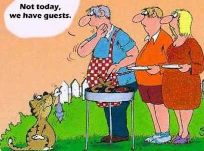 Cat barbecue