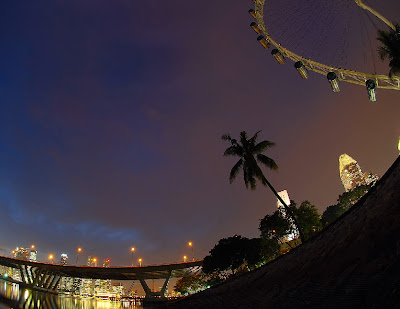 singapore flyer in the tropics