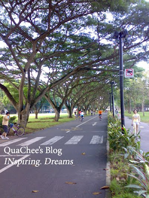 east coast park, singapore, lane for jogging & cycling
