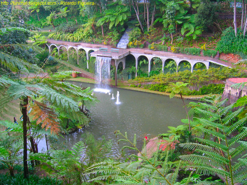 imagens de jardim tropicalJardim Tropical Monte Palace
