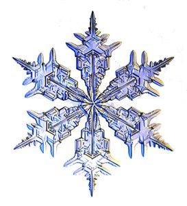 [Snowflake_300h.jpg]