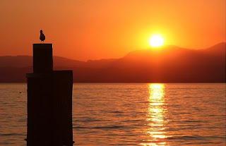 lake-garda-sunset-bird-on-post-b.jpg