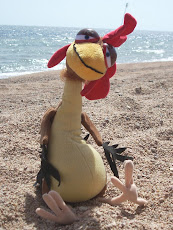Chicken Joe at the Beach