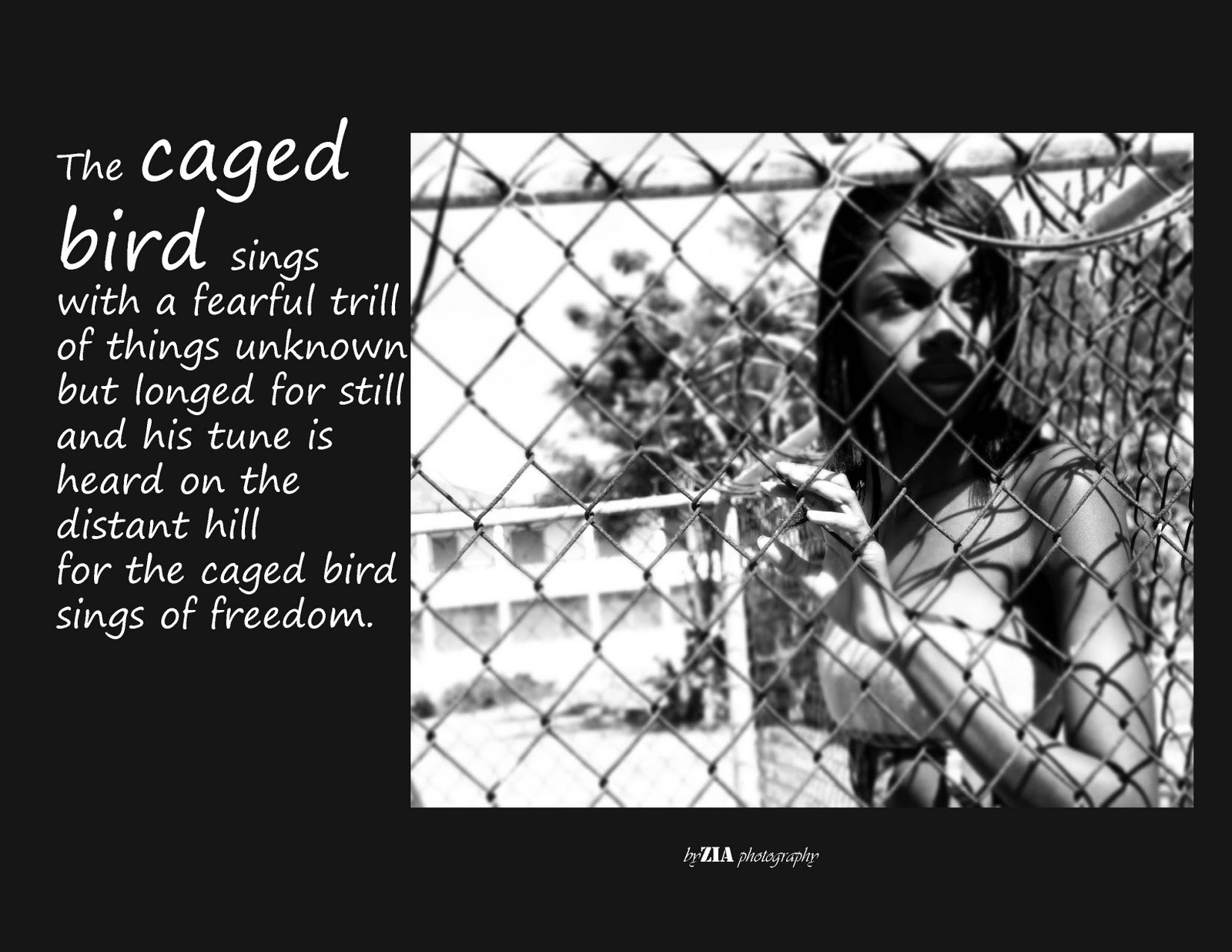 zia s stuff i know why the caged bird sings i know why the caged bird sings