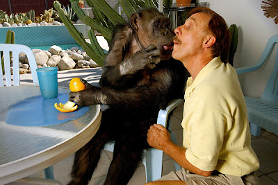 Tarzan's Chimpanzee Cheeta Celebrates 75th Birthday