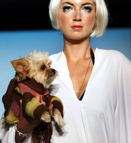 [Pet_Fashion_Week_7.jpg]