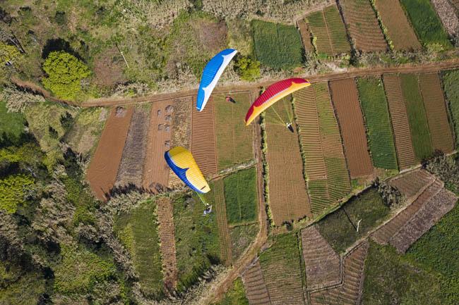 [Paragliding_Madeira6.jpg]