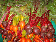 Chioggia and gold beets