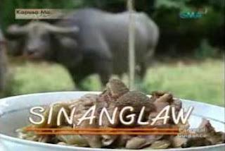 Sinanglaw