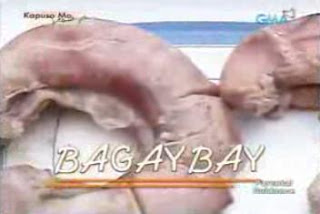 Bagaybay