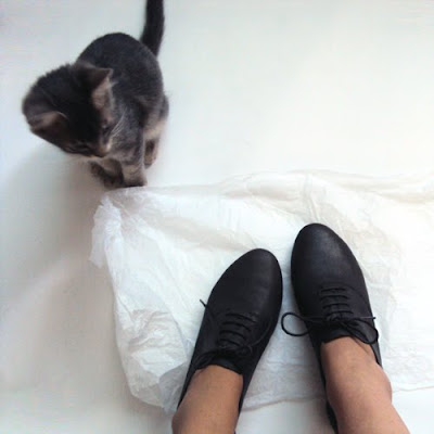 Cat Shoes Price In Uae