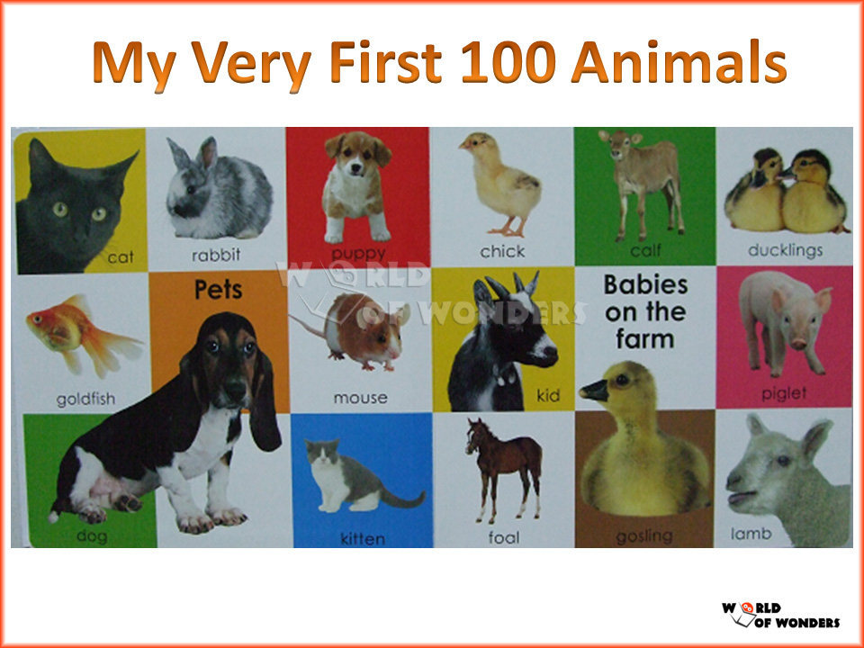 World of Wonders: Bright Baby My Very First 100 Animals