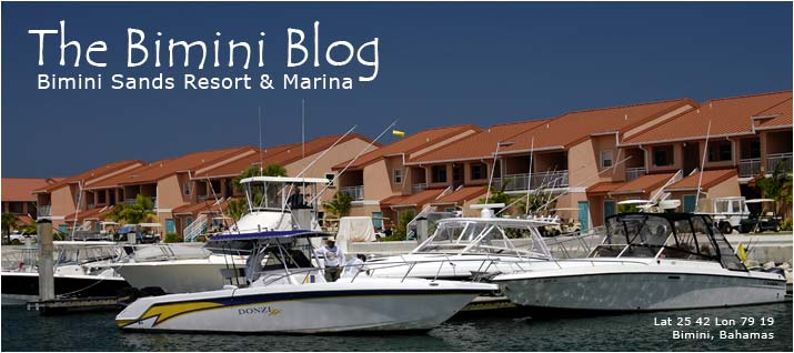 Bimini Sands Blog