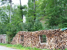 The woodpiles of our beliefs.