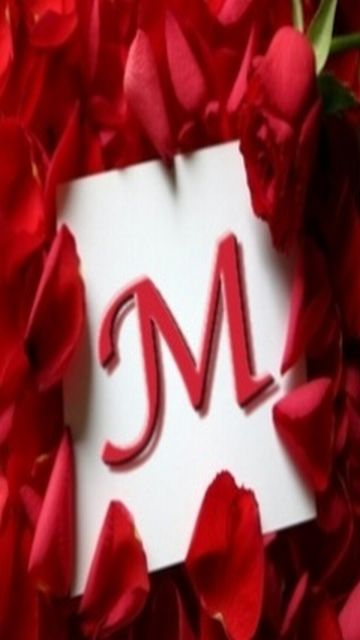 Letter M Wallpap...U Letter Design Wallpaper