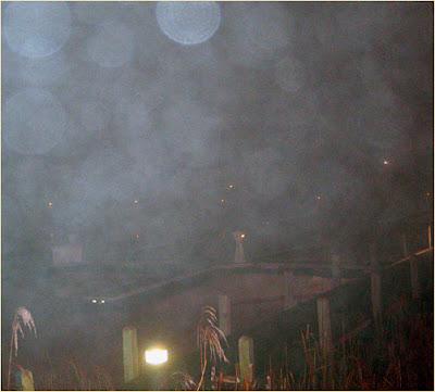 fog docks