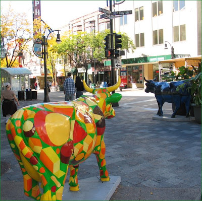 Parade Cow