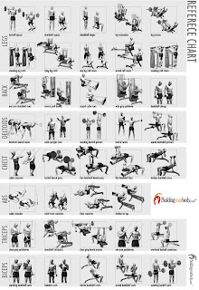 all bodyworkout guide workout charts for body