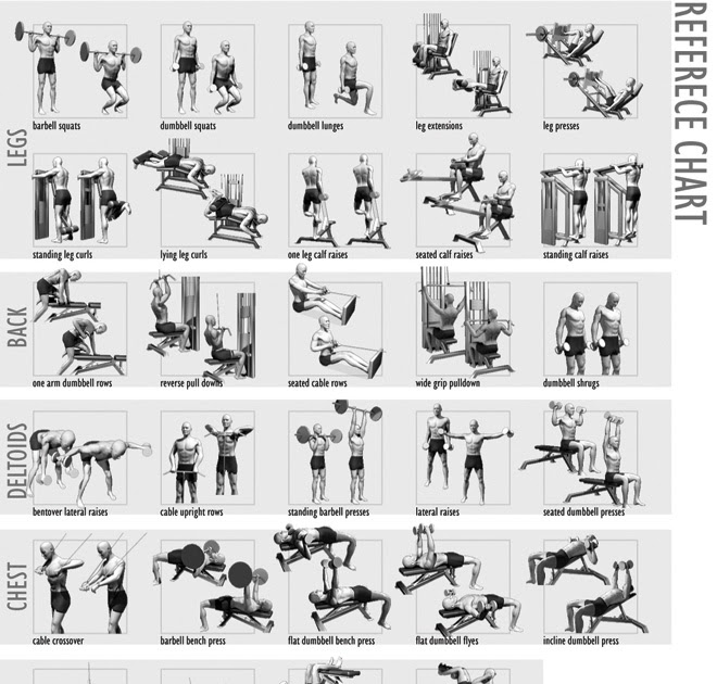 Isometric Exercises Chart: All Bodyworkout Guide: Workout Charts For Body