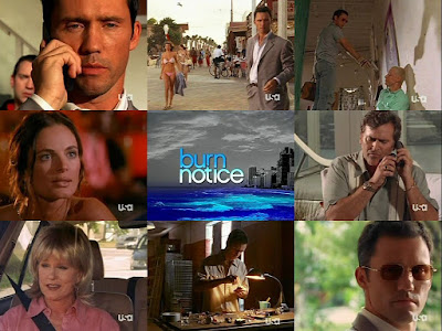 BURN NOTICE (ULTIMO AVISO)