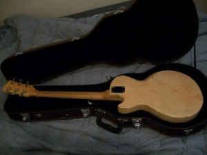 craigslist vintage guitar hunt july 2009. Black Bedroom Furniture Sets. Home Design Ideas