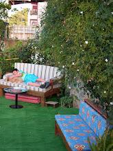 The New Ottoman Garden