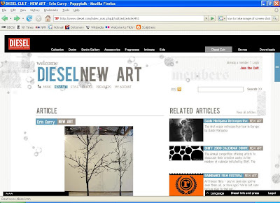 screen shot of diesel with article about Erin Curry