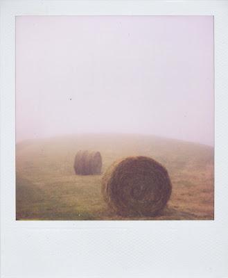 Erin Curry art- Penland Pola hay bales