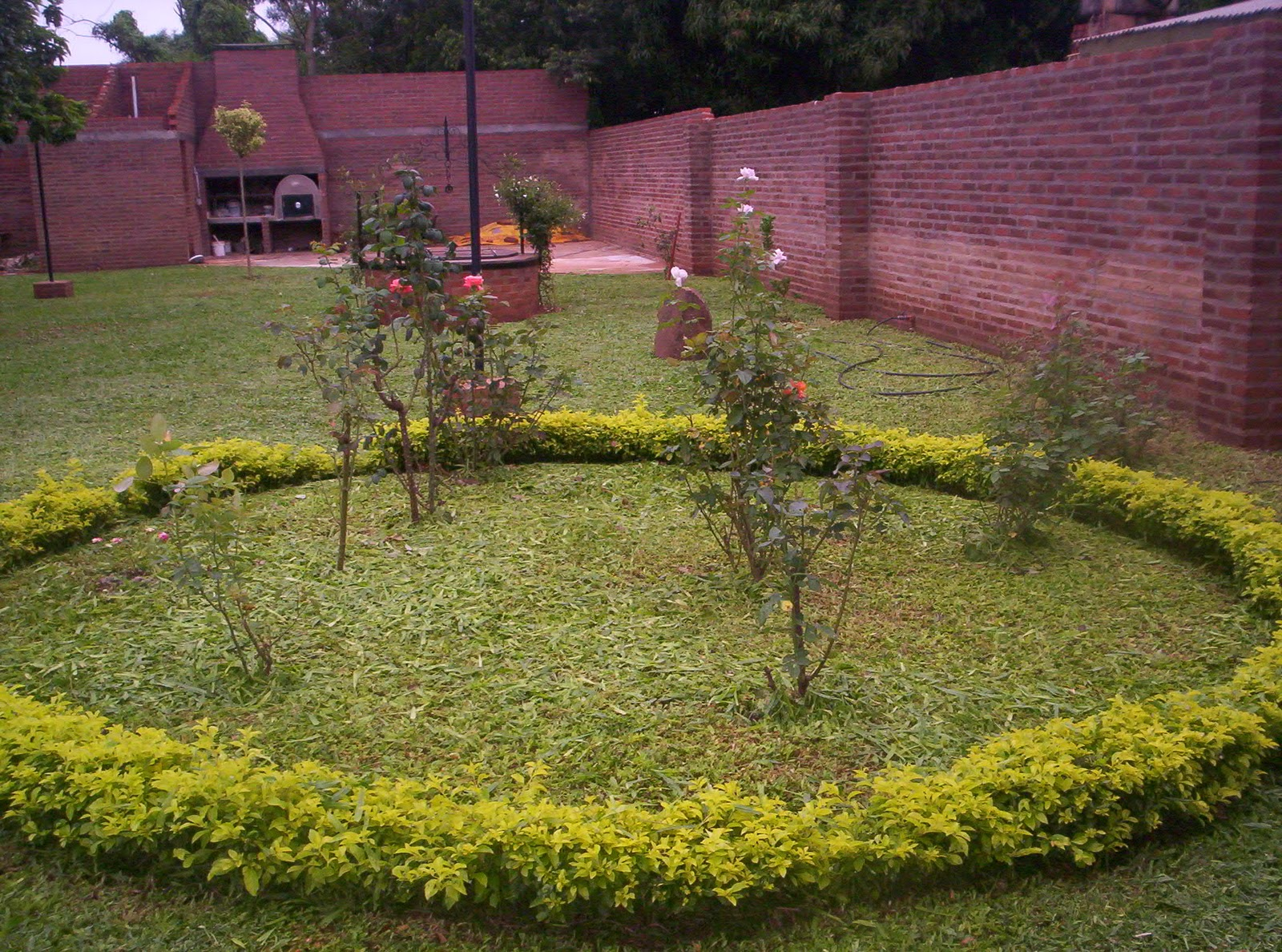 Paisajes y jardines duranta - Paisajes y jardines ...