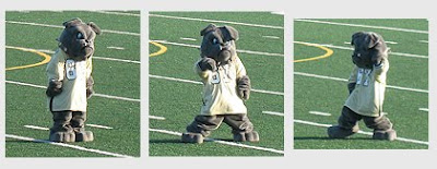 """A photo of the mascot Spike dancing at half time to """"Who Let The Dogs Out"""""""