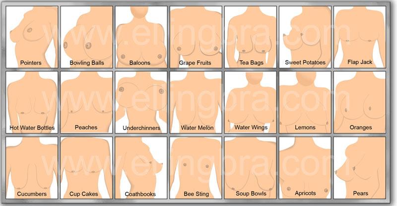 хочется потрогать какие бывают формы женской груди фото так фактически бери