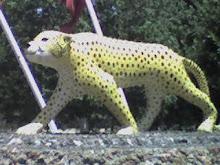 lion de imouzzer
