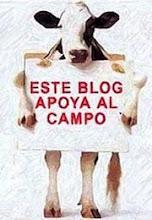 APOYO AL CAMPO