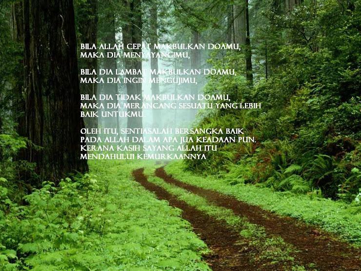 Jalan Pulang Syair Seorang Sufi
