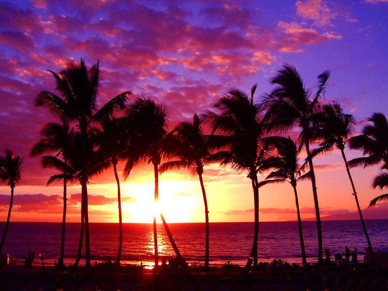 Hawaiian Beach Sunset Wallpaper Background: Beauty Sunset Hawaii Beach Wallpaper