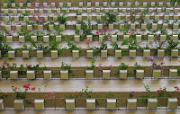 Hyatt vertical garden