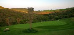 VISTAS GREENS CAMPO GOLF