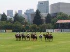 Instalaciones Deportivas de Campos de Polo.