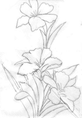 pintura em tecido flores amarilis risco