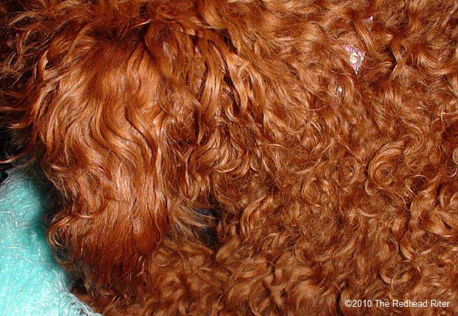 massive curls