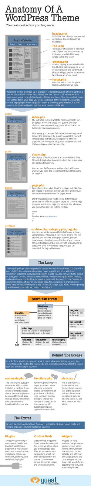 Infographic of Anatomy of a WordPress Theme