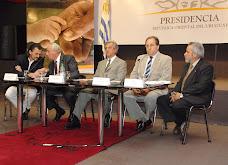 PRESENTACIÓN EN PRESIDENCIA DE LA REPÚBLICA DE LAS AUTORIDADES DE LA UNASEV