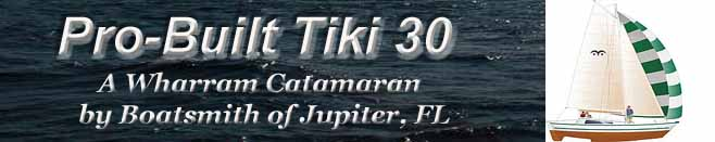 Pro-Built Tiki 30
