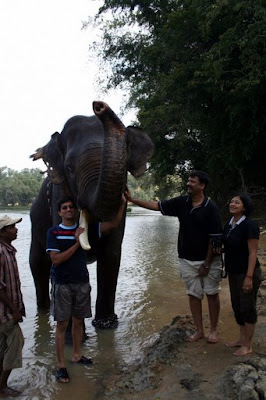 with elephant Ekadanta at Dubare Elephant Camp