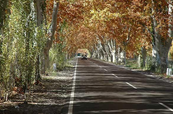 Cabaas El Bermejo en Mendoza CABAA GRANDE de 5 a 9
