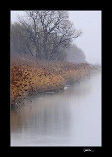 Drumurile de ape ne arată depărtările, poate ale sufletului ...
