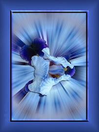 Iris, mesager între sfinţenie şi mitologie